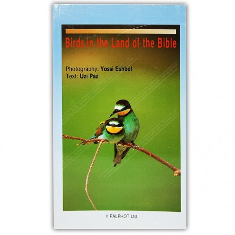 Birds in the Land of the Bible
