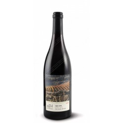 Galil Pinot Noir, Galil Mountain Winery